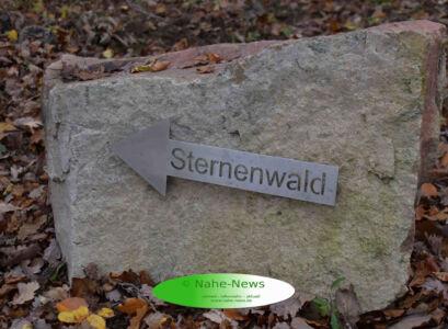 Waldfriedhof_pdw_151119_03-w2000-h2000