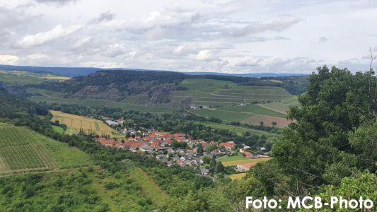 WanderwegLemberg_mcb_17