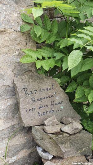 WanderwegLemberg_mcb_40